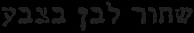 לוגו שחור לבן בצבע